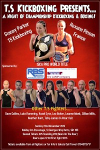 TS Kickboxing show